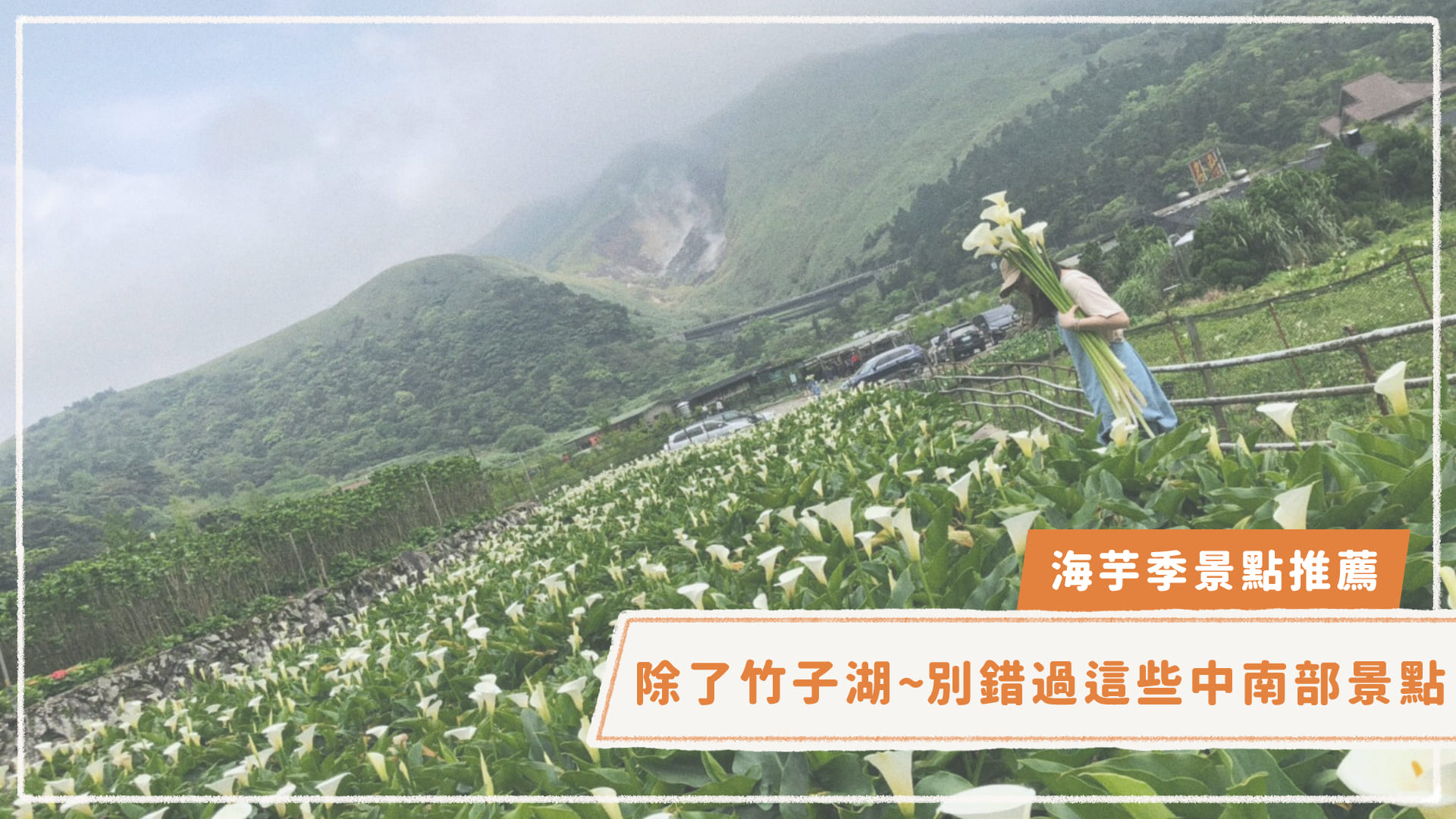 【海芋季景點推薦】除了竹子湖…別錯過這些中南部景點